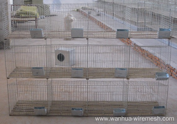 Flushing Rabbit Cage