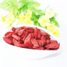 CINA GOJI BERRY GOOD QUALITY HARGA MURAH