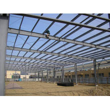 Steel Building/Steel Structural Shed (SSW-14334)