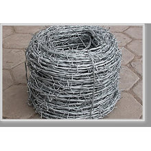 Barbed Wire (HT-45)