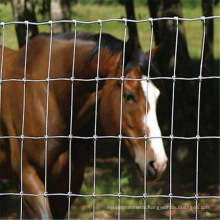 Low Carbon Steel Wire farm fence / Sport Fence / Field Fencing
