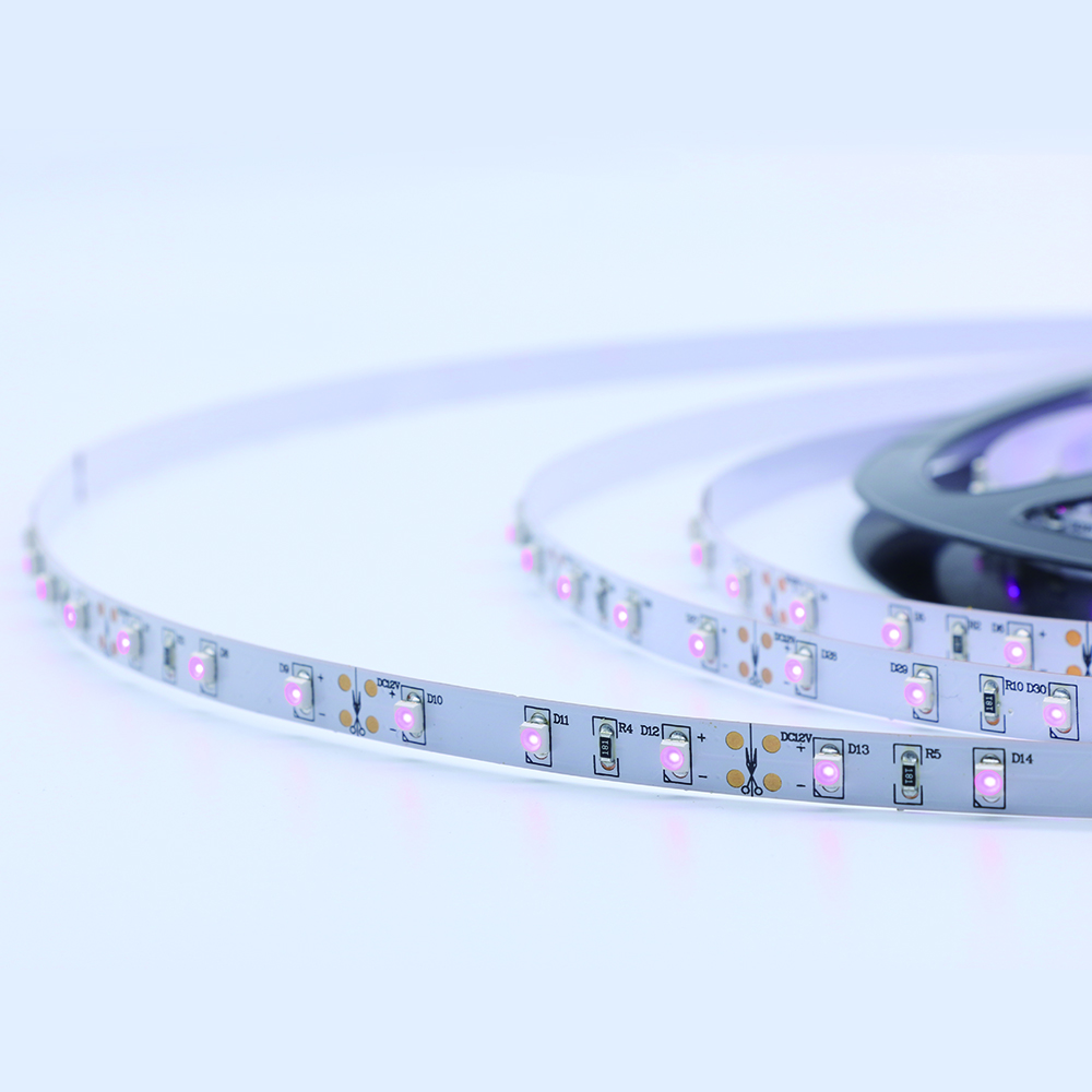 Purple 60led strip light