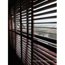 89mm 114mm Real Basswood Shutters Quality Shutters (SGD-S-5976)