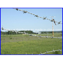 Galvanized Barbed Wire for Security Fence