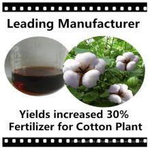 Fertilizantes especiais para plantas de algodão
