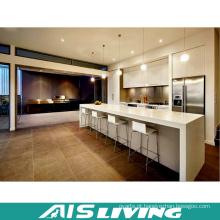 Armário da cozinha da mobília do projeto moderno (AIS-K401)