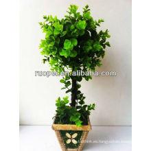 árbol de la bola de la hoja en casa y fuera de la decoración árbol de la bola del topiary del boj