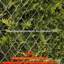 50*50mm PVC coated chain link fence