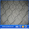 PVC hexagonal wire mesh and chicken mesh