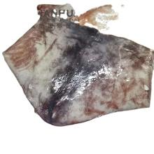 Giant Squid Wing 10kg Sacks Perivan Origin Pota Squid