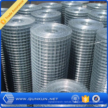 Galvanized Welded Wire Mesh for Security Fence
