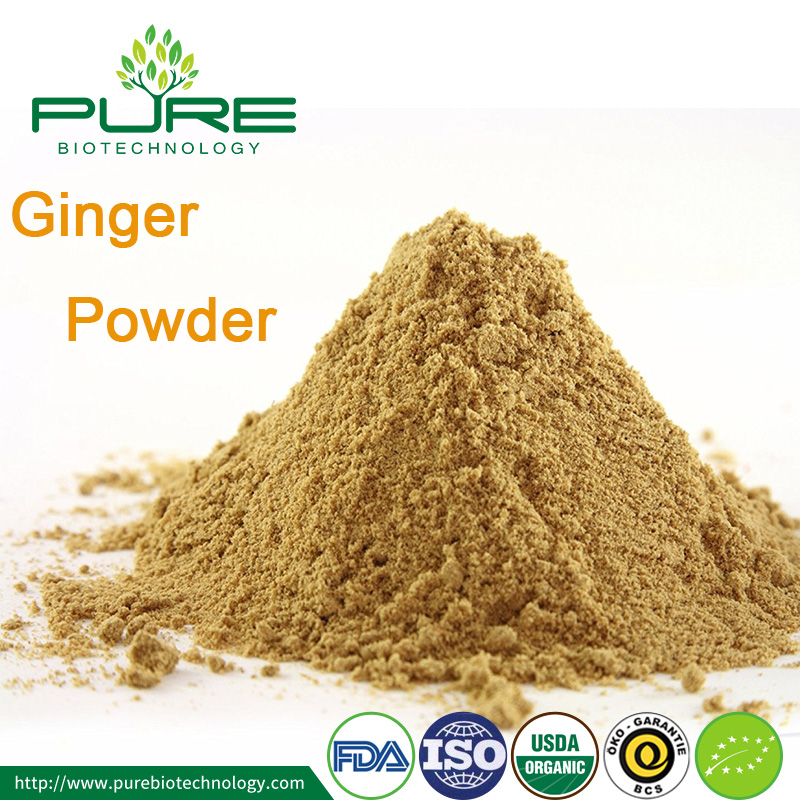 Ginger Powder 1