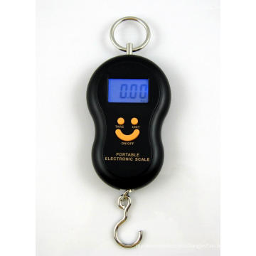 Factory Supply Electronic Digital Scale Weighing Scale (0-40kg)