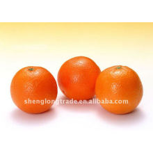 Frutas frescas de umbigo doce laranja