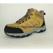 Lady Style Cemented Safety Shoes (HQ6120501)