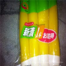 Rabanete conservado doce japonês de 1kg takuan para o sushi