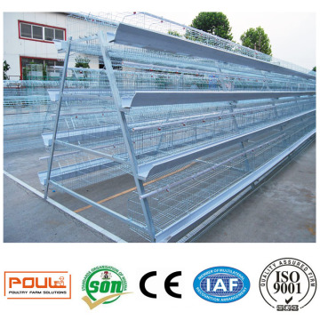 Poultry Farm Battery Cage Project