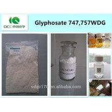 Herbicide / weedicide glyphosate 747 g / l, 757 g / l WDG, 74,7%, 75,7% WDG, cas: 1071-83-6 -lq