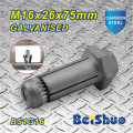 Made in China Anchor Bolt M16X26X75mm
