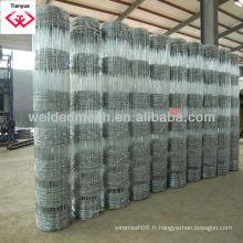 Clôture de prairie de qualité galvanisée ou revêtue de PVC (ISO 9001)