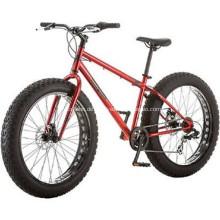 4.0 Big Tire Fett Fahrrad