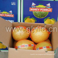 Frischer neuer Honig Pomelo 2