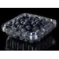 Obstschale aus PET-Kunststoff für Blaubeeren