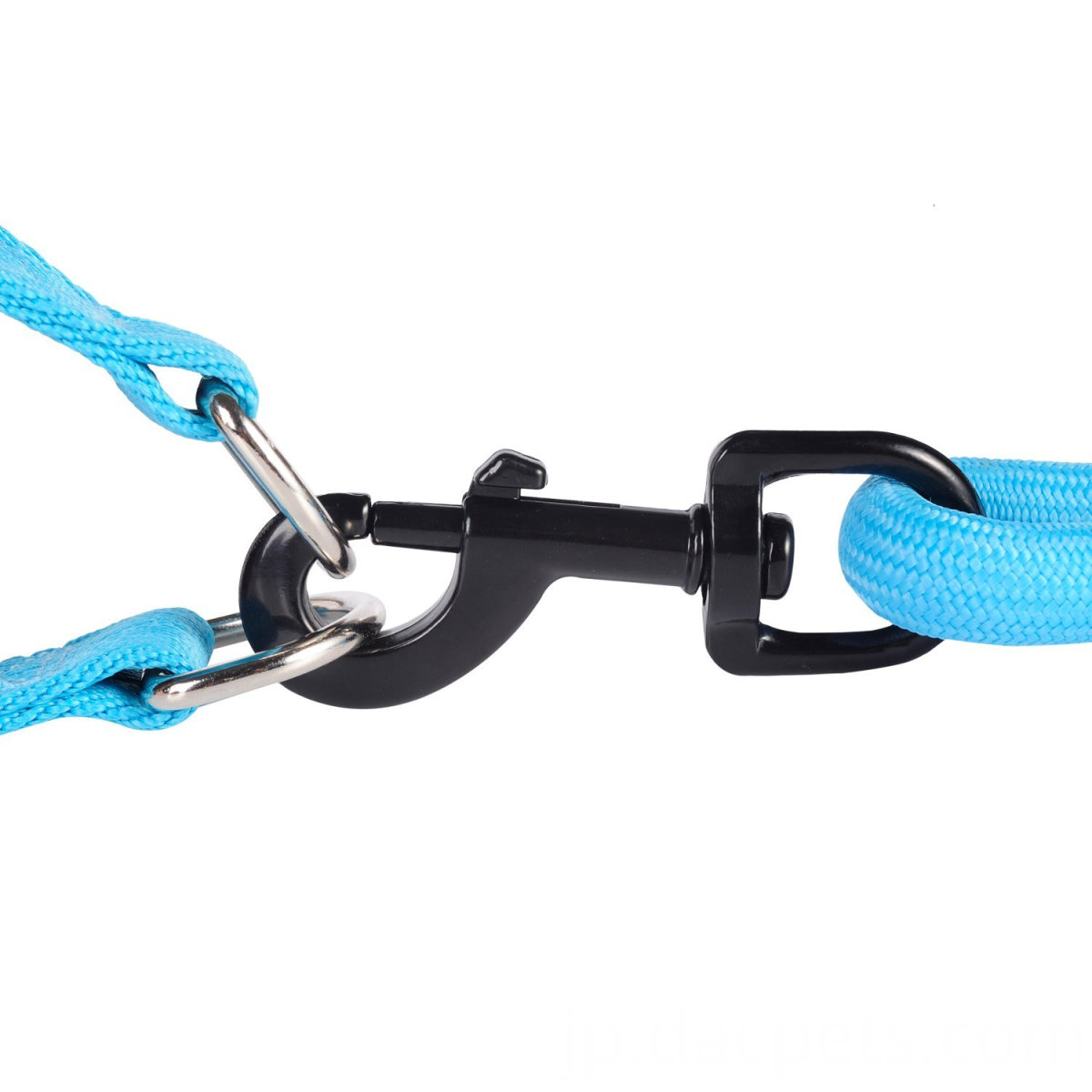 Foam Handle dog Leash with Harness
