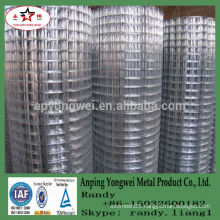 YW--galvanized welded wire chicken cages/chicken laying cage/folding chicken cage