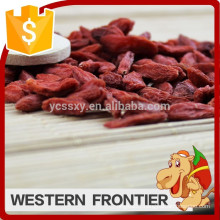 free of pollution high quality thick sweet goji berry