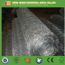 "3/4"" Mesh Chicken Wire Netting with Good Quality"
