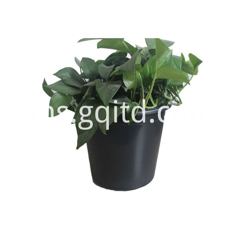 plastic plant for house