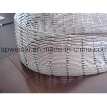 Maille ferrée de corde de fil d'acier inoxydable