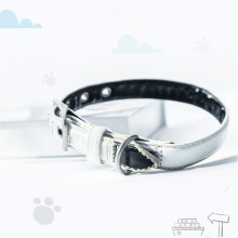Oem Personalized Dog Collars and Leashes