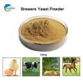 Preço de levedura de cerveja alta proteína Animal Feed