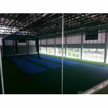Maunsell International High Quality PVC Flooring for Cricket Court Indoor /Outdoor in Roll