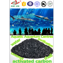 30x60 granular shell activated carbon for water