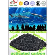 Carvão ativado com concha granular 30x60 para água