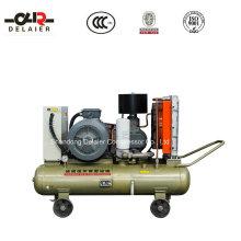 Compresseur d'air à vis rotatif portatif Dlr Dlr-40aop