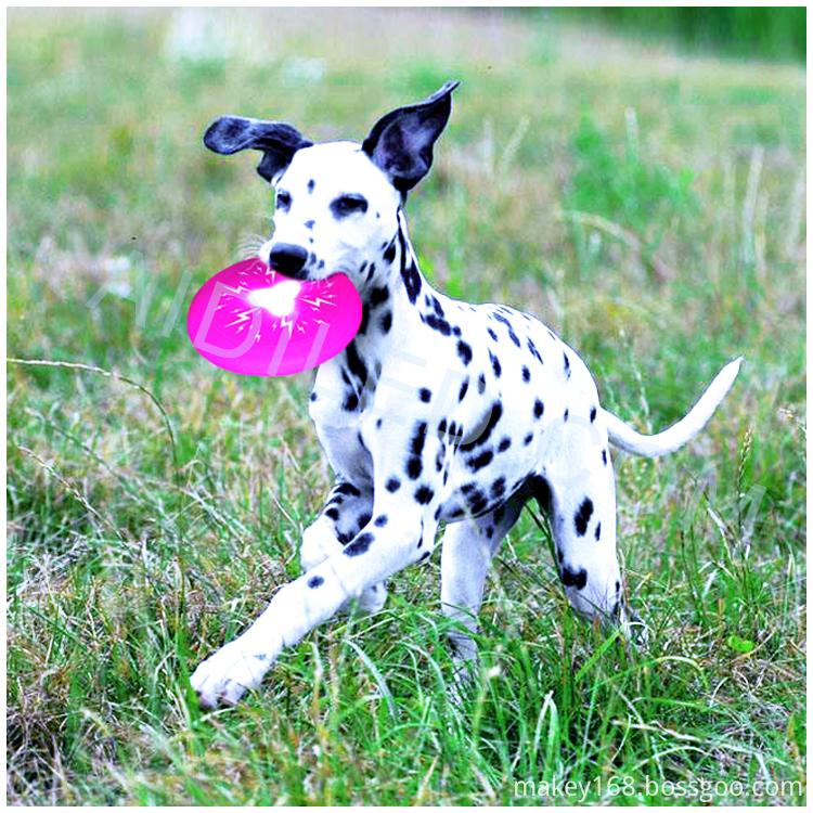 Soft Dog Frisbee