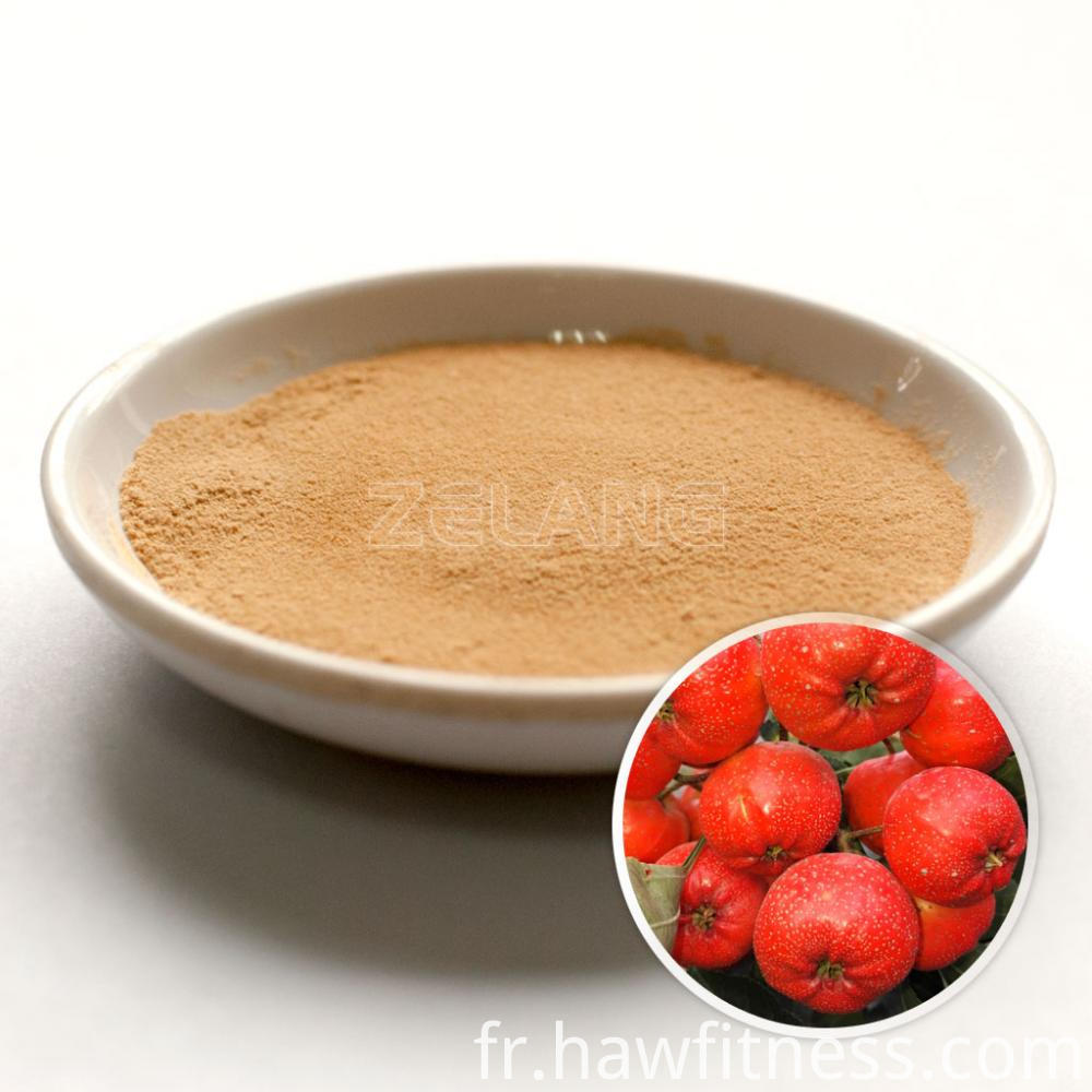 Hawthorn Fruit Extract