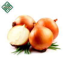 Vente chaude Oignon Rouge Frais / Oignon Jaune 4 - 6cm 5 - 7 cm 8 - 10 cm de Shandong Chine