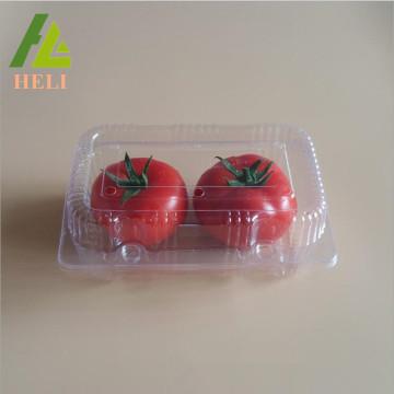 Recipiente de embalagem de frutas com tomate de plástico claro