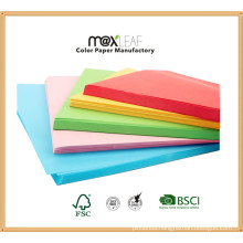Colored Woodfree Office Copy Paper Printing Paper Coated Paper