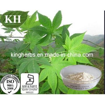 Natural Edulcorante Sweet Tea Extract Rubusosides 75% Min por HPLC