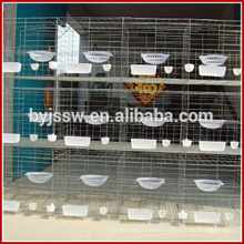 Trade Assurance Pigeon Baskets and Cages For Sale