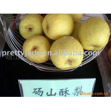 chinese su pear