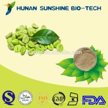 Фармацевтического класса антимикробных зеленый кофе был П. е.