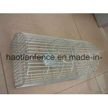 Mousetrap / Cage