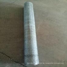 1/2 Zoll PVC beschichtete galvanisierte sechseckigen Maschendraht / Maschendraht